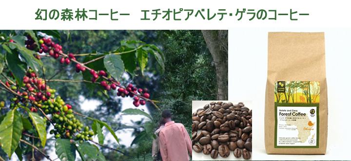 ベレテ・ゲラ コーヒー